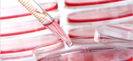 """Latvijas Biomedicīnas pētījumu un studiju centrs veiks turpmākus """"Rigvir"""" pētījumus"""